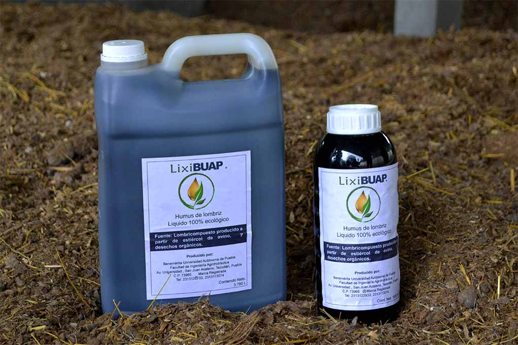 BUAP crea productos naturales con lombricomposta